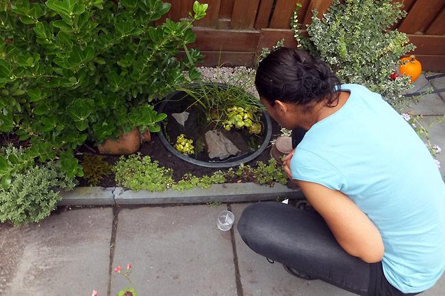 Marjori Hong met de waterbeestjes in haar mini vijver