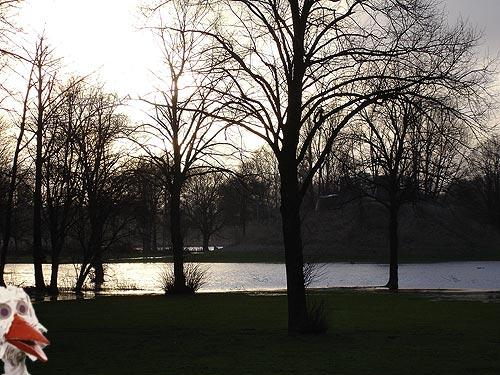 Een nieuw meer naast de Sloterplas en ook de ooievaar heeft er een kijkje genomen.