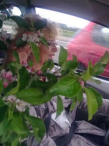 Met Els én de appelboom in de auto