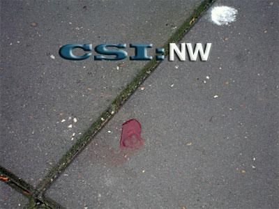 CSI Amsterdam Nieuw West - Crime Scene Investigation - Plaats delict: de tuin