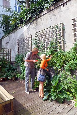 De stiltetuin van MOES - Els helpt een handje tomaten plukken