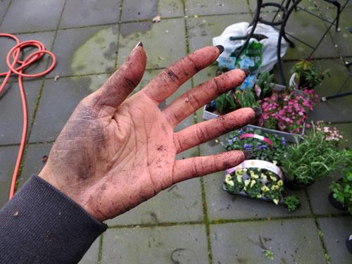 Zwarte nagels bij tuinieren