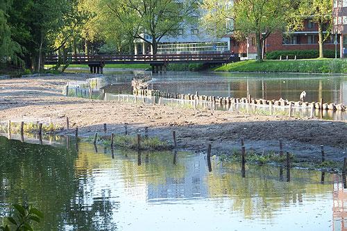 Een deel van de nieuwe natuurvriendelijke oevers in het Sloterpark.