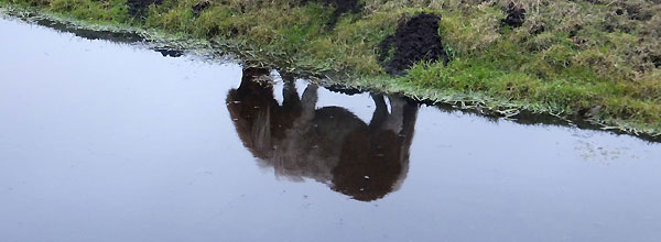 Het spiegelbeeld, van het paardje aan de Osdorperweg, Amsterdam