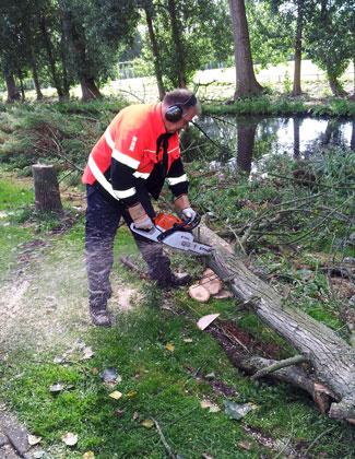 Gemeentewerker/Slager Rob snijdt vrolijk wat plakjes boom voor me