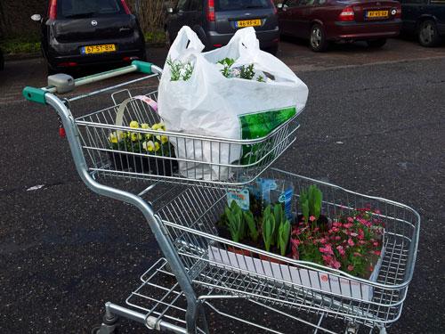 Tuincentrum Osdorp - Bloembollen, viooltjes en meer...
