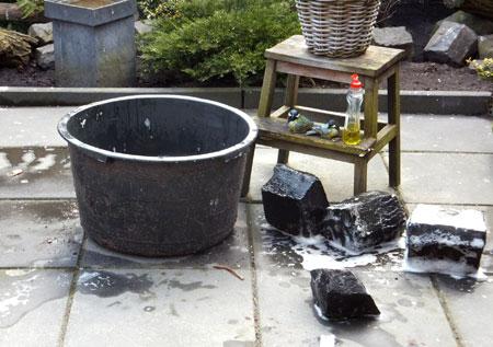 Mini vijver (cementbak) schoonmaken voor een nieuw seizoen.