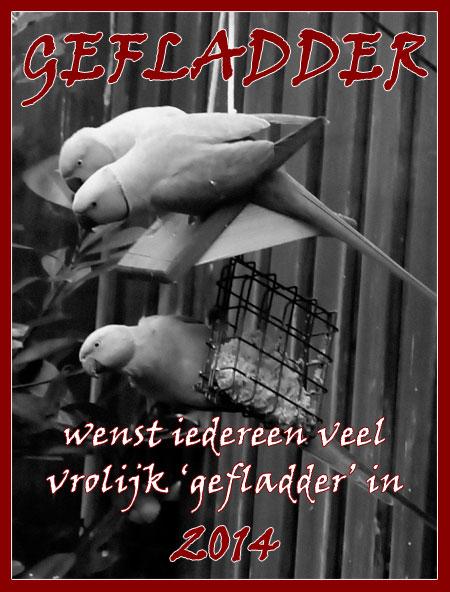 Nieuwjaarswensen van Gefladder. Ook namens de halsbandparkieten!